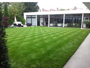 Lawns and turf for Wimbledon London